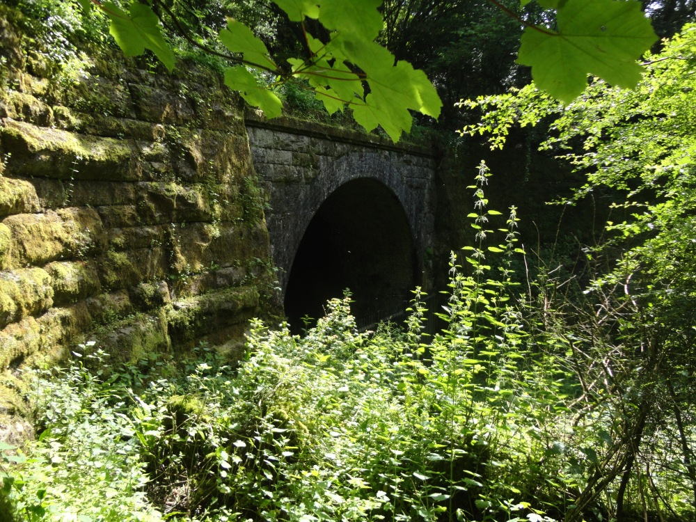 Adventure is out there - The Wenvoe Tunnel (4/6)