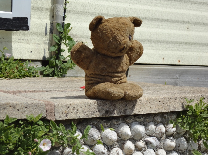 The Bear Nobody Loved – Chapter2